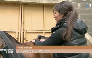 reportage france 3 vivh